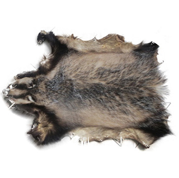 Choose Badger Haircoat
